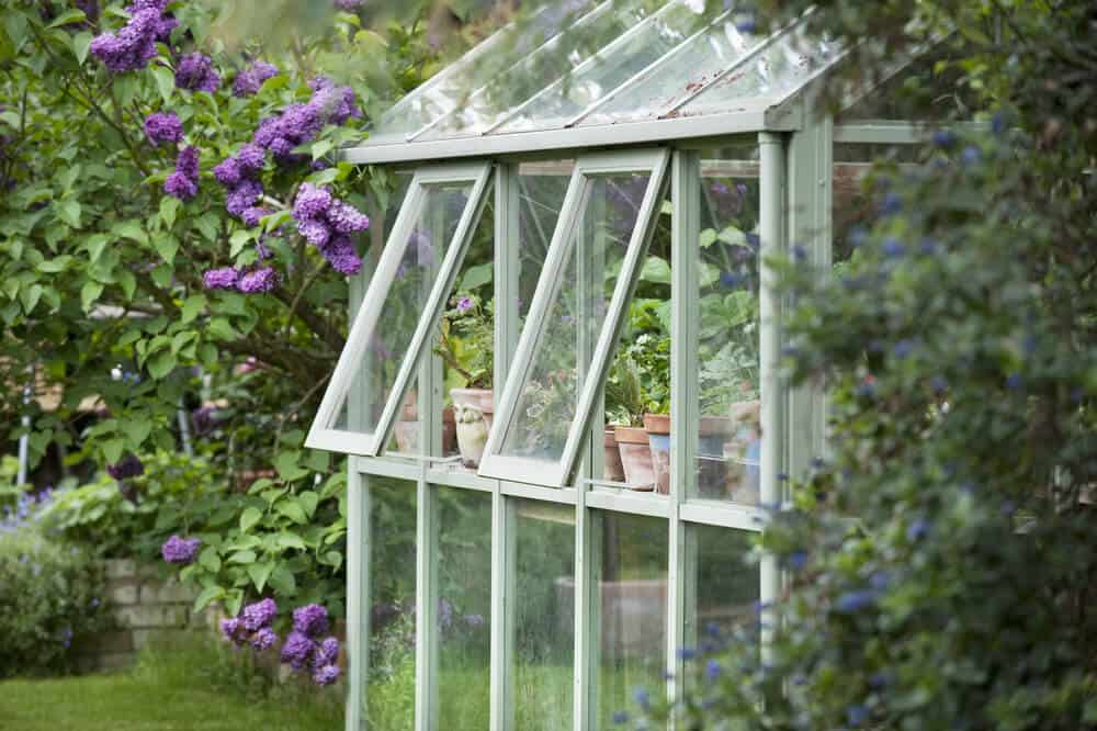 greenhouse glass Luton