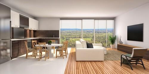 glass integral blinds